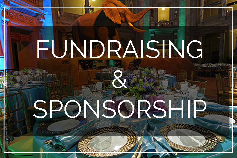 Table at Fundraising Event and link to Fundraising Course